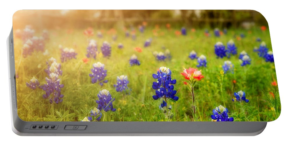 Wild Flowers Portable Battery Charger featuring the photograph Country Wildflowers by TK Goforth