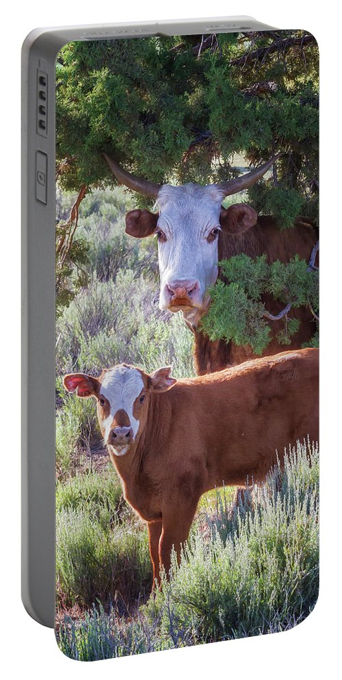 Cow Portable Battery Charger featuring the photograph Cow And Calf by Belinda Greb