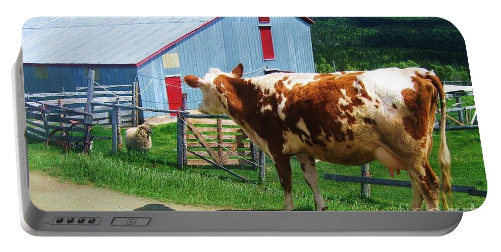 Photograph Cow Sheep Barn Field Newfoundland Portable Battery Charger featuring the photograph Cow Sheep And Bicycle by Seon-Jeong Kim