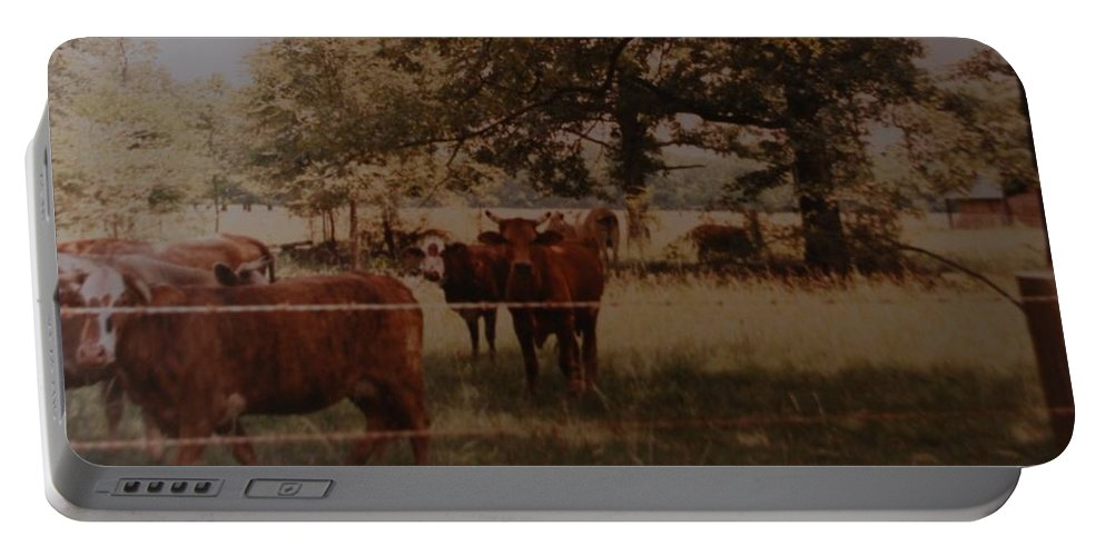 Cows Portable Battery Charger featuring the photograph Cows by Rob Hans