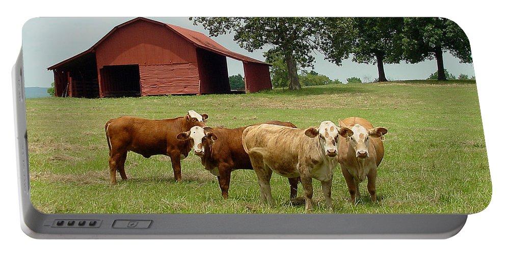 Cow Portable Battery Charger featuring the photograph Cows8954 by Gary Gingrich Galleries
