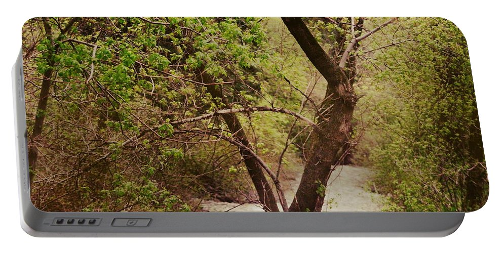 Dreamy Portable Battery Charger featuring the photograph Cozy Stream in American Fork Canyon Utah by Colleen Cornelius