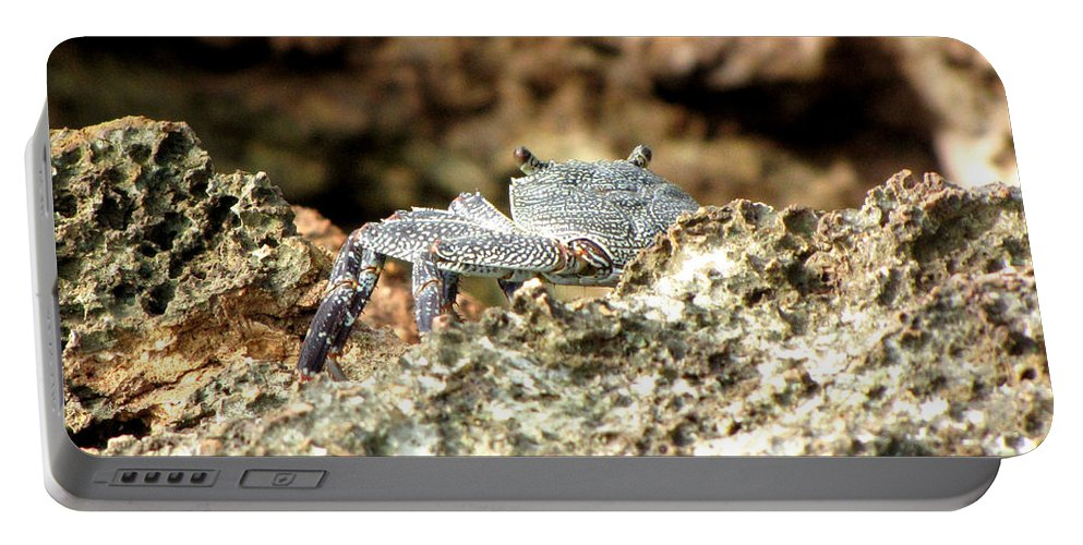 Crab Portable Battery Charger featuring the photograph Crab by Sarah Houser
