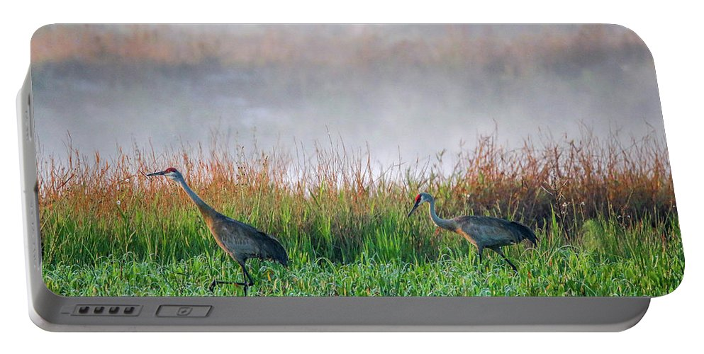 Crane Portable Battery Charger featuring the photograph Cranes On Foggy Day by Tom Claud