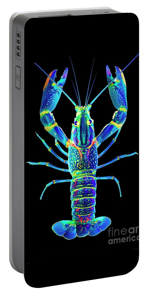 Poster Digital Art Greeting Cards Postcard Paintings Drawings Design Collage Assemblage Vivid Colors Bright Crawfish Langusta Langosta American Lobster Sea Aquarium Aqua Tropical Seafood Portable Battery Charger featuring the mixed media Crawfish In The Dark - Blublue by Baptiste Posters