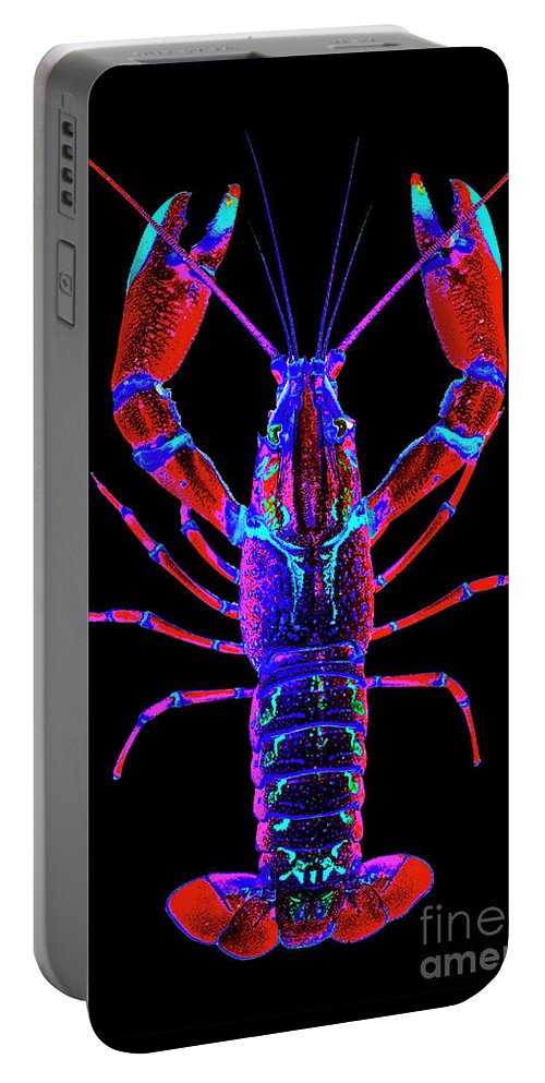 Poster Digital Art Greeting Cards Postcard Paintings Drawings Design Collage Assemblage Vivid Colors Bright Crawfish Langusta Langosta American Lobster Sea Aquarium Aqua Tropical Seafood Portable Battery Charger featuring the mixed media Crawfish In The Dark- Redblue by Baptiste Posters