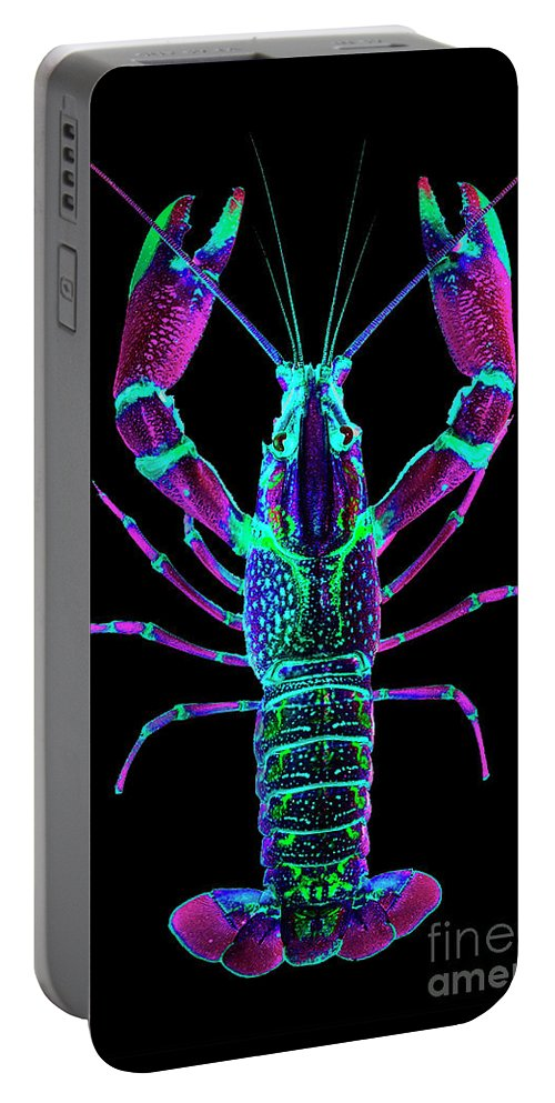Poster Digital Art Greeting Cards Postcard Paintings Drawings Design Collage Assemblage Vivid Colors Bright Crawfish Langusta Langosta American Lobster Sea Aquarium Aqua Tropical Seafood Portable Battery Charger featuring the mixed media Crawfish In The Dark - Rosegreen by Baptiste Posters
