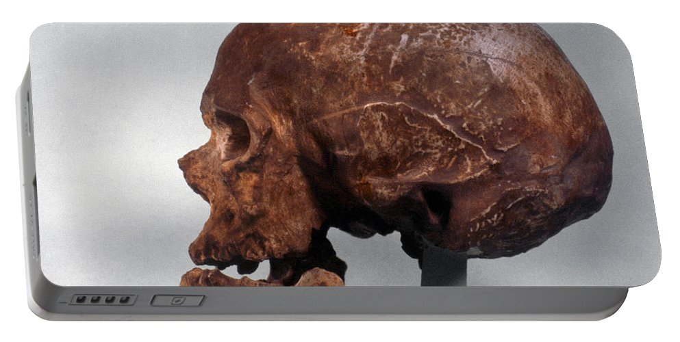 Artifact Portable Battery Charger featuring the photograph Cro-magnon Skull by Granger