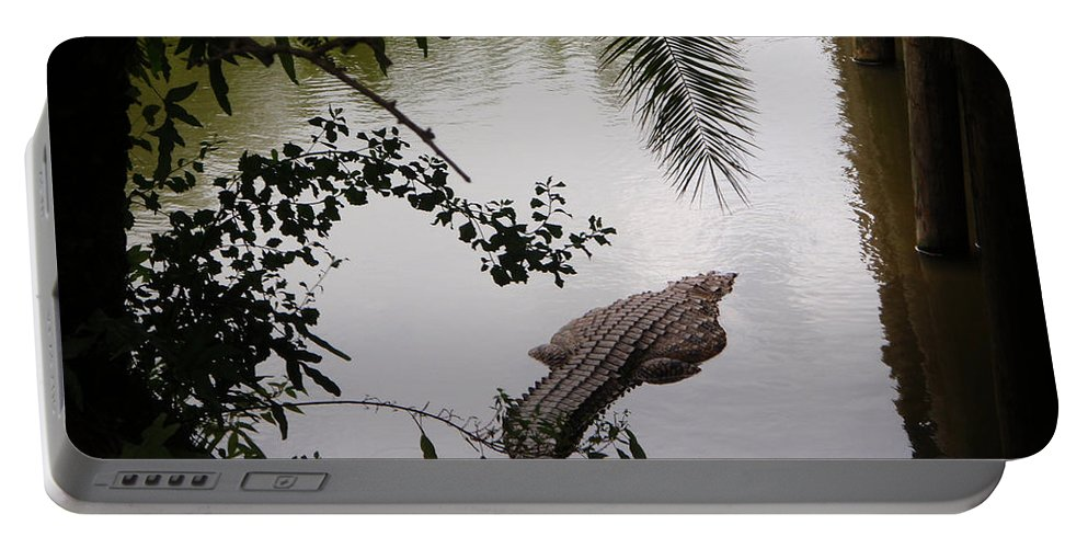 Croco Portable Battery Charger featuring the photograph Croco by Are Lund