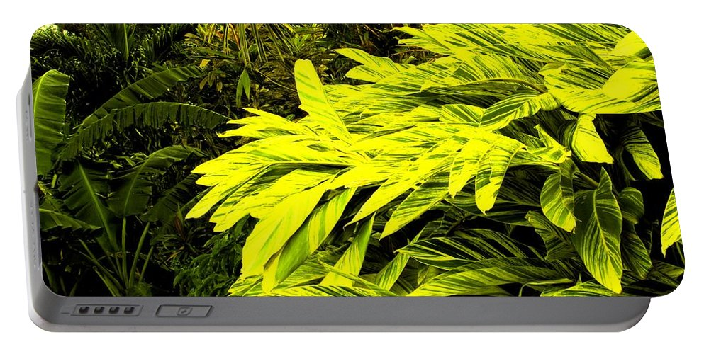 Croton Portable Battery Charger featuring the photograph Croton Cascading Down The Hillside by Ian MacDonald