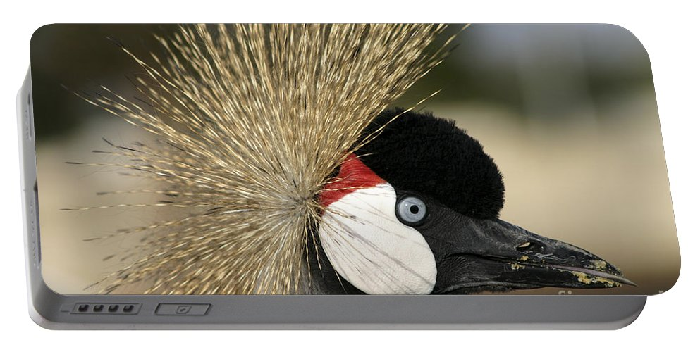 Crowned Portable Battery Charger featuring the photograph Crown Crane Close Up by Danny Yanai