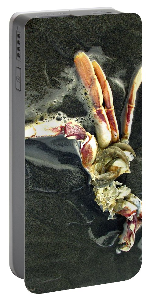Crab Portable Battery Charger featuring the photograph Crustacean On The Shore by Joyce Dickens