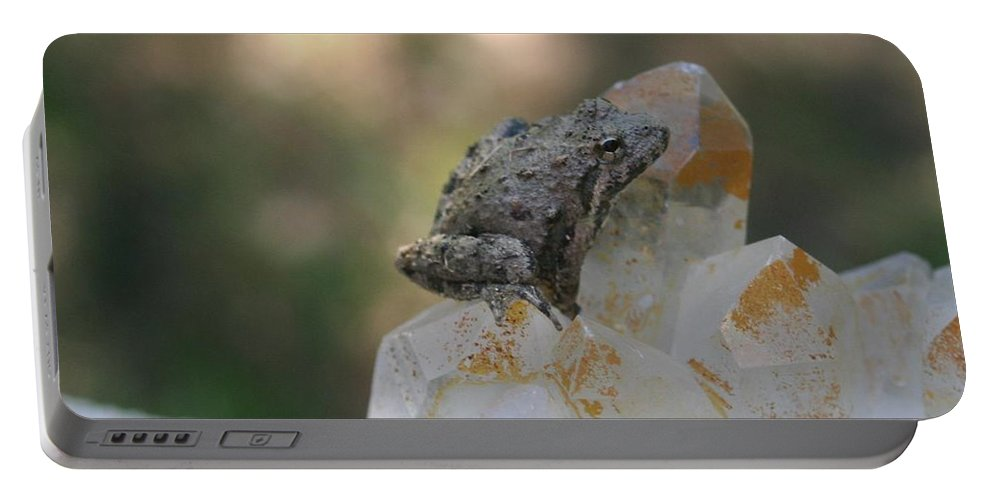 Nature Portable Battery Charger featuring the photograph Crystal Frog by William Pounds