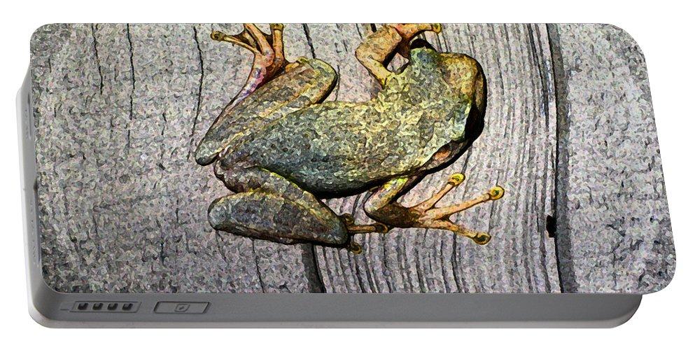 Susan Vineyard Portable Battery Charger featuring the photograph Cudjoe Key Frog by Susan Vineyard