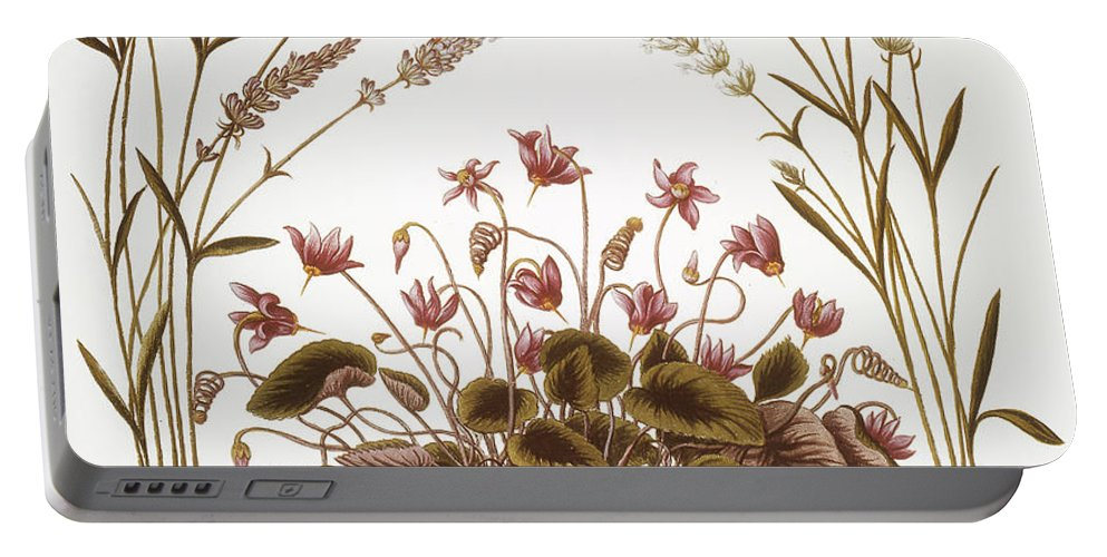 1613 Portable Battery Charger featuring the photograph Cyclamen & Lavender, 1613 by Granger