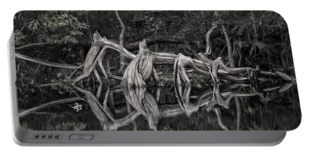 Cypress Portable Battery Charger featuring the photograph Cypress Design by Steven Sparks