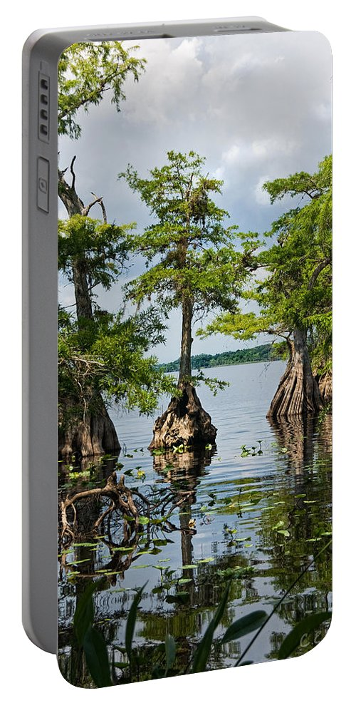 Trees Portable Battery Charger featuring the photograph Cypress Reflections by Christopher Holmes