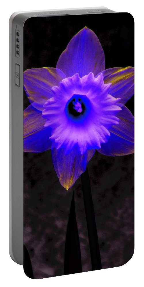 Daffodil Portable Battery Charger featuring the photograph Daffodil 4 by Tim Allen