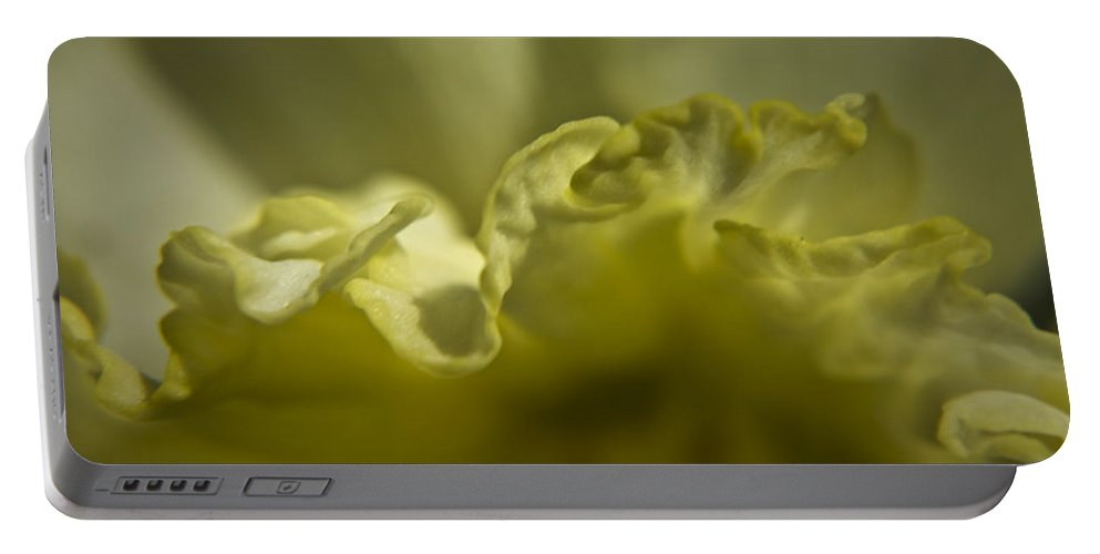 Flower Portable Battery Charger featuring the photograph Daffodil Ruffles by Teresa Mucha