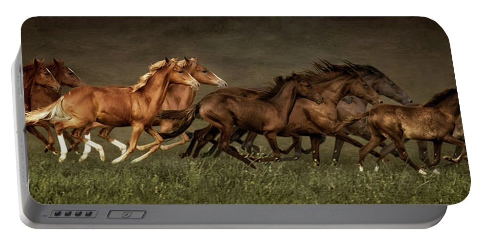 Horses Portable Battery Charger featuring the digital art Daily Double by Priscilla Burgers