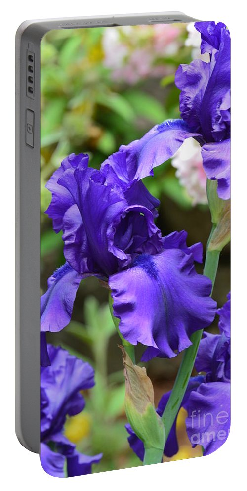 Dancing Blue Irises Portable Battery Charger featuring the photograph Dancing Blue Irises by Maria Urso