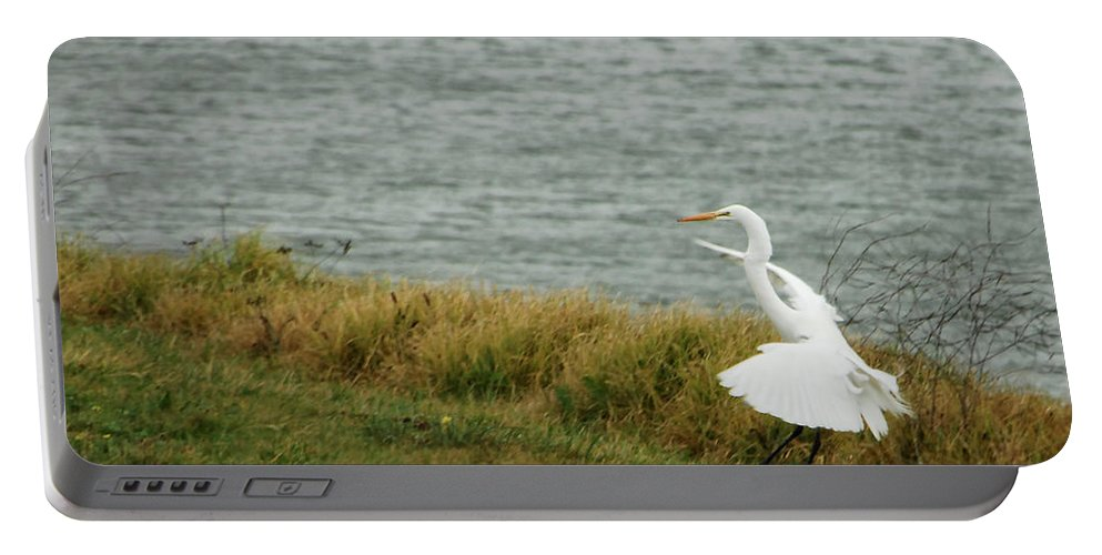 Egret Portable Battery Charger featuring the photograph Dancing Egret by Donna Blackhall