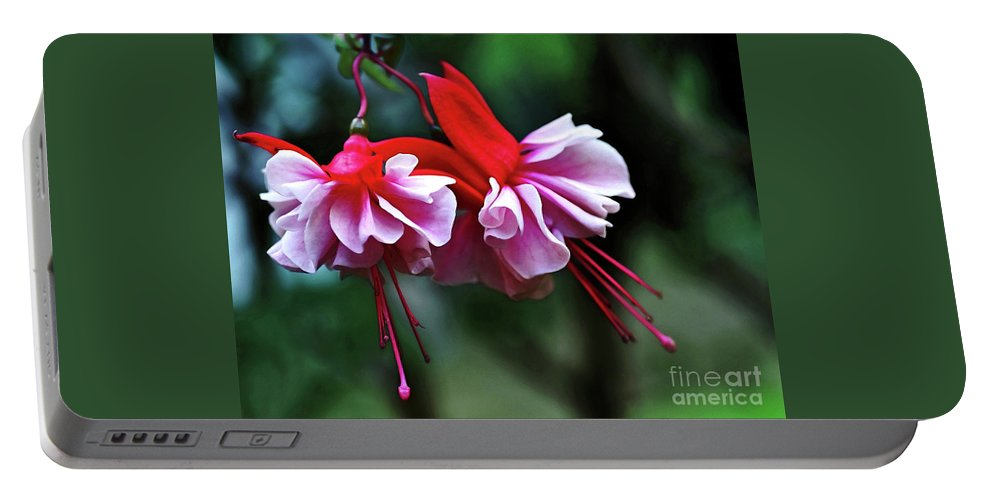 Dancing Ladies Portable Battery Charger featuring the photograph Dancing Ladies by Kaye Menner