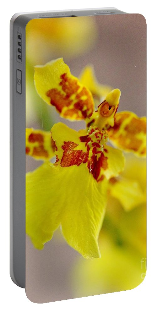 Oncidium Orchid Portable Battery Charger featuring the photograph Dancing Lady Orchid by Mesa Teresita