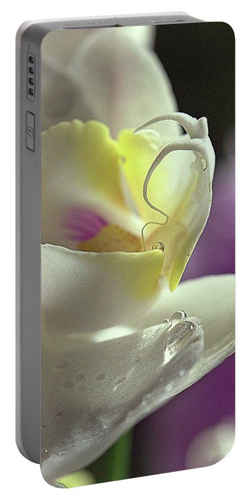 Photography Portable Battery Charger featuring the photograph Dancing Woman by Mithat Hitit