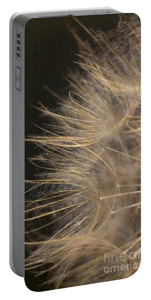 Dandelion Portable Battery Charger featuring the photograph Dandelion Eighty by LKB Art and Photography