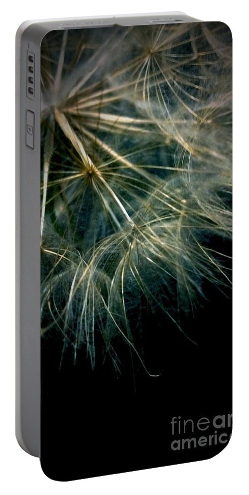 Dandelion Portable Battery Charger featuring the photograph Dandelion Eighty Six by LKB Art and Photography