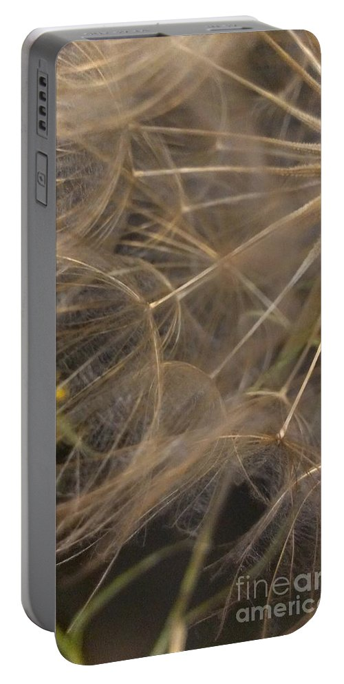 Dandelion Portable Battery Charger featuring the photograph Dandelion Eighty Three by LKB Art and Photography