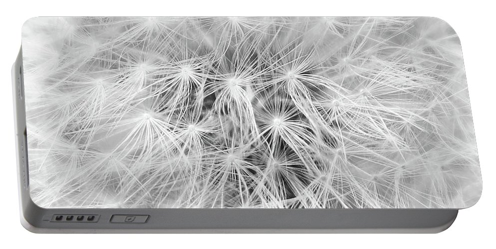 Dandelion Portable Battery Charger featuring the photograph Dandelion by Erin Donalson