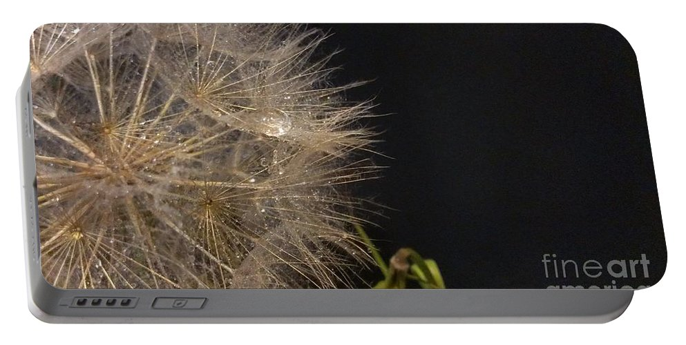Dandelion Portable Battery Charger featuring the photograph Dandelion Fifty Eight by LKB Art and Photography