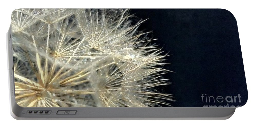Dandelion Portable Battery Charger featuring the photograph Dandelion Fifty Five by LKB Art and Photography