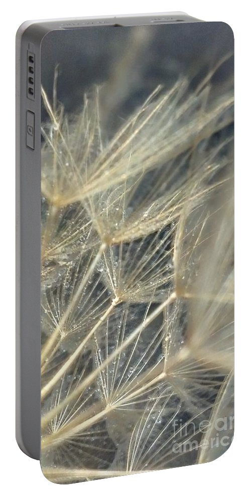 Dandelion Portable Battery Charger featuring the photograph Dandelion Fifty by LKB Art and Photography