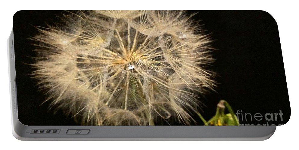 Dandelion Portable Battery Charger featuring the photograph Dandelion Fifty Nine by LKB Art and Photography