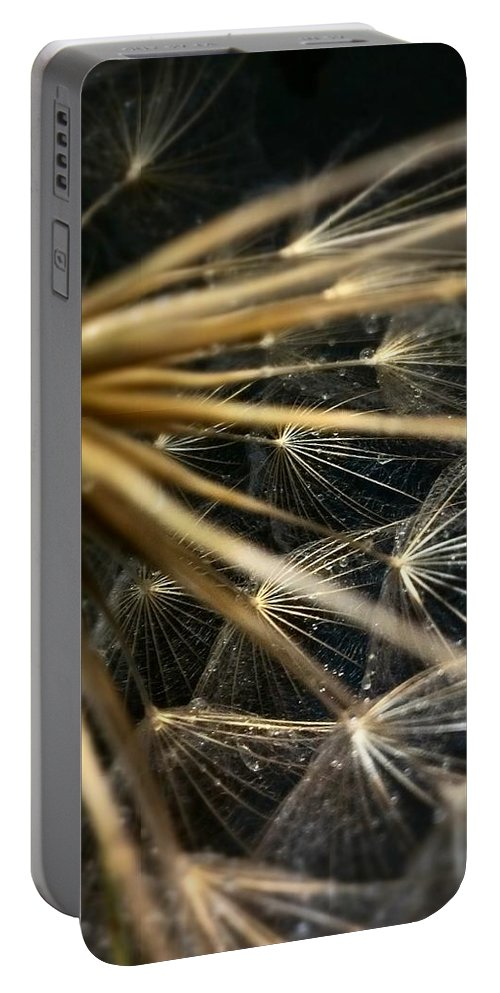 Dandelion Portable Battery Charger featuring the photograph Dandelion Forty Three by LKB Art and Photography