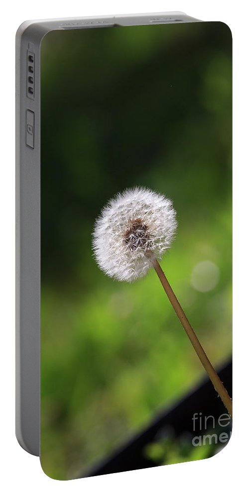 Dandelion Portable Battery Charger featuring the photograph Dandelion In Green by Richie Hamrick