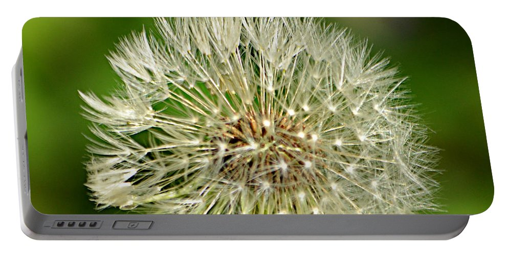 Dandelion Puff Portable Battery Charger featuring the photograph Dandelion Puff by Ally White