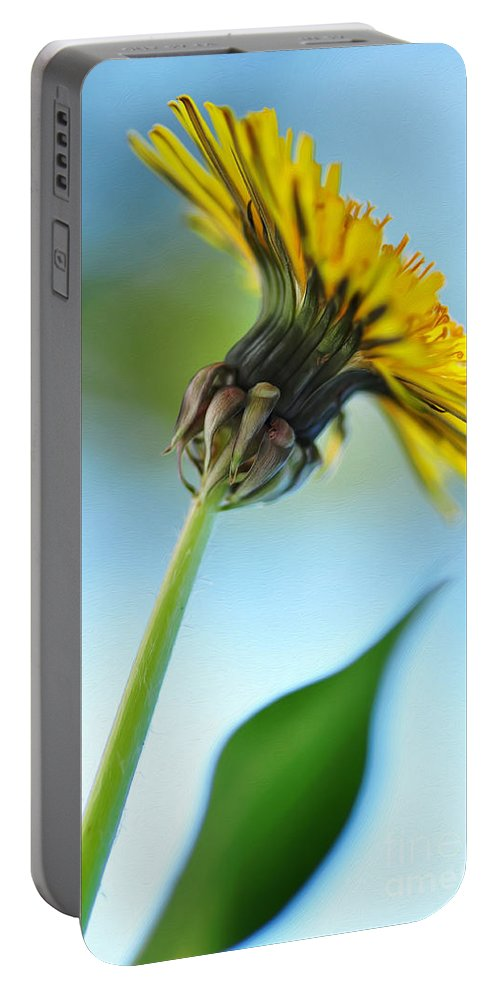 Photography Portable Battery Charger featuring the photograph Dandelion Reaching High by Kaye Menner