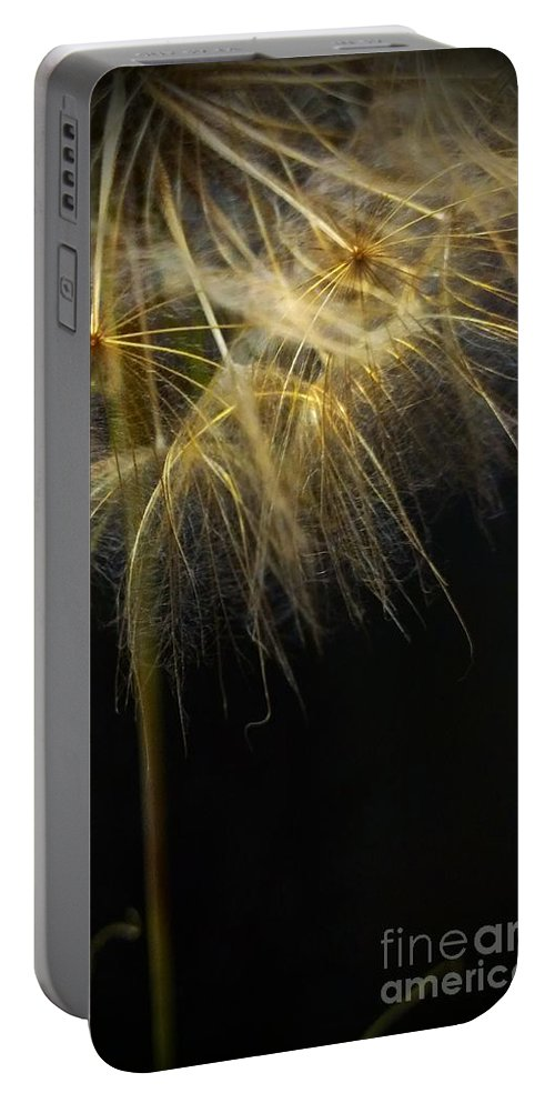 Dandelion Portable Battery Charger featuring the photograph Dandelion Seventy Four by LKB Art and Photography