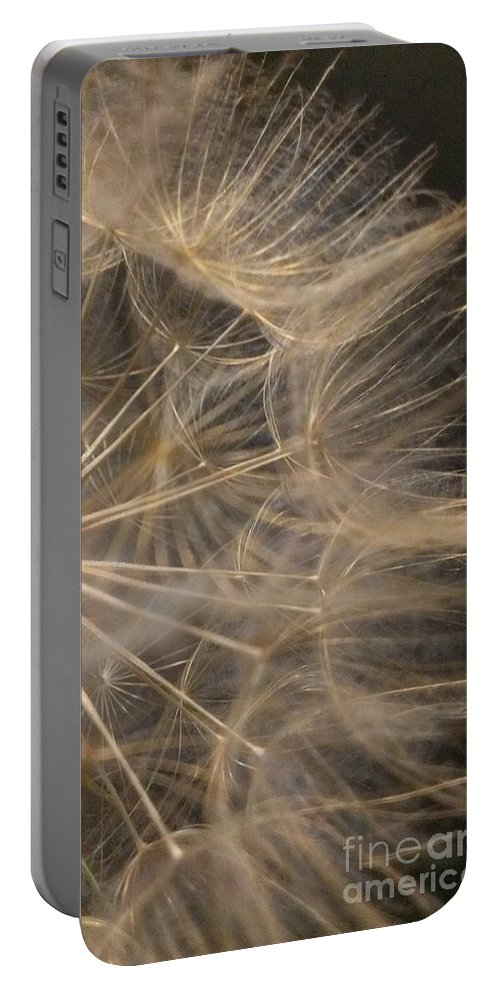 Dandelion Portable Battery Charger featuring the photograph Dandelion Seventy Nine by LKB Art and Photography