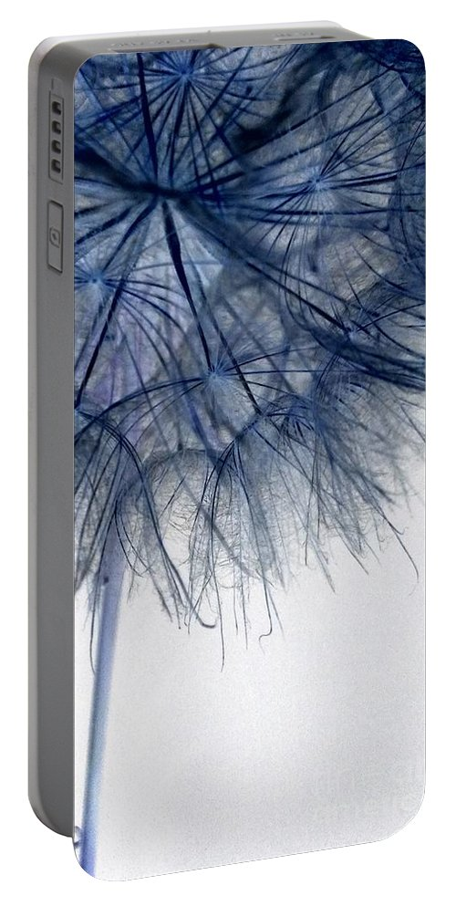 Dandelion Portable Battery Charger featuring the photograph Dandelion Twenty Five by LKB Art and Photography
