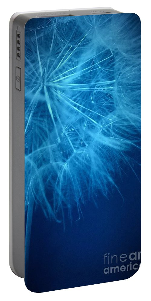 Dandelion Portable Battery Charger featuring the photograph Dandelion Twenty Four by LKB Art and Photography