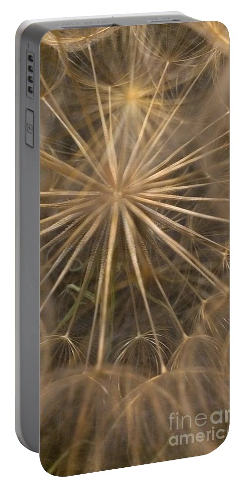 Dandelion Portable Battery Charger featuring the photograph Dandelion Twenty One by LKB Art and Photography