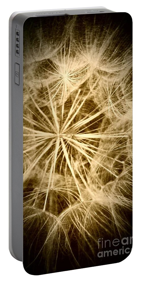 Dandelion Portable Battery Charger featuring the photograph Dandelion Twenty Three by LKB Art and Photography