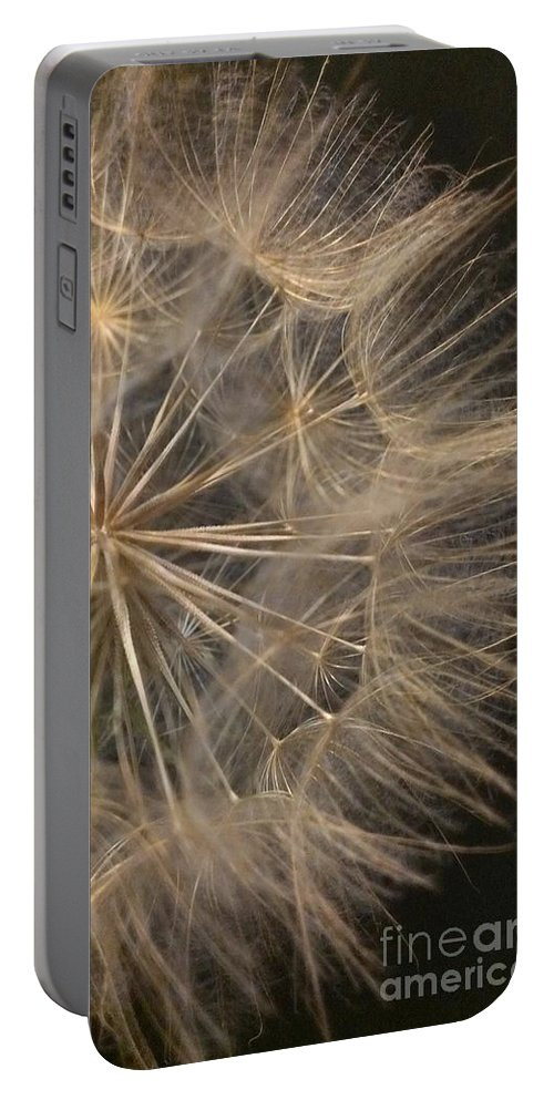 Dandelion Portable Battery Charger featuring the photograph Dandelion Twenty Two by LKB Art and Photography