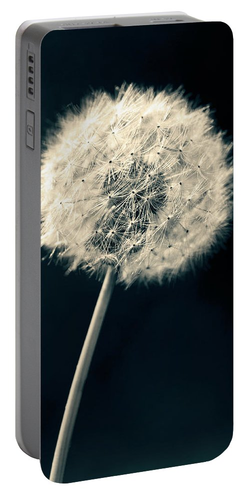 Closeup Portable Battery Charger featuring the photograph Dandelion by U Schade