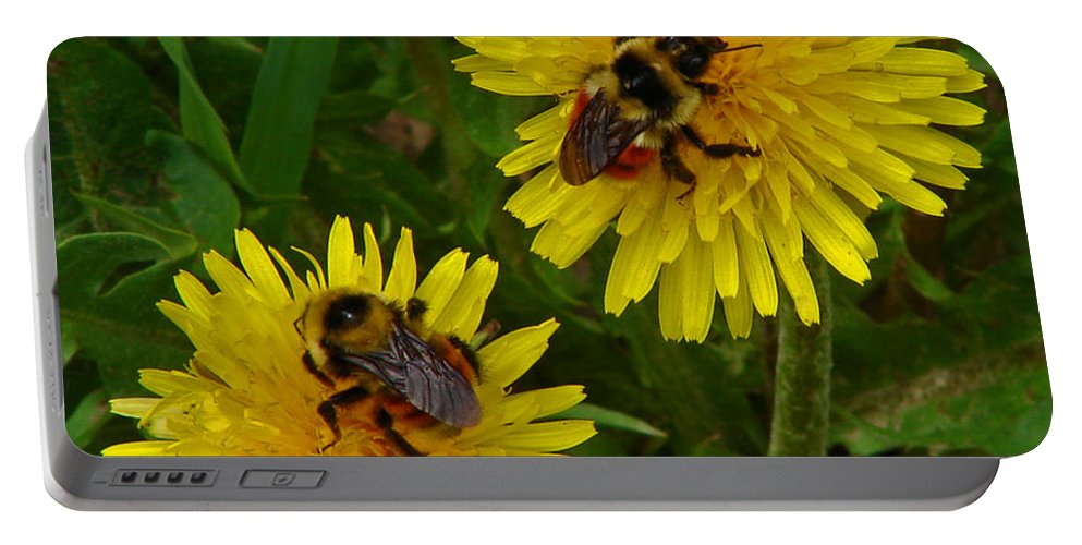 Dandelion Portable Battery Charger featuring the photograph Dandelions and Bees by Heather Coen